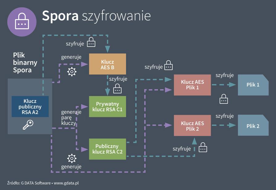 Spora - proces szyfrowania.