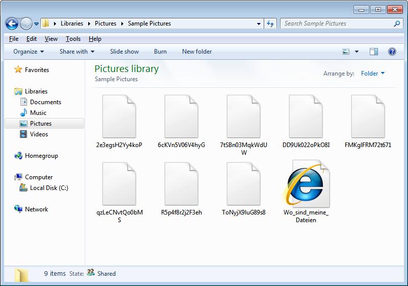Pliki zaszyfrowane HSDFSCrypt
